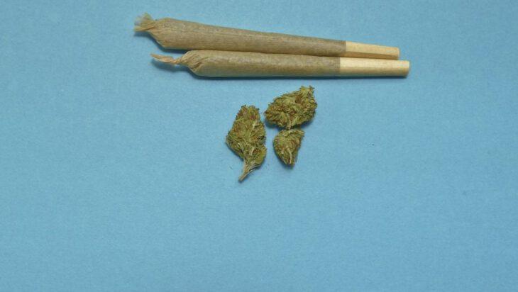 2 x narkotyki