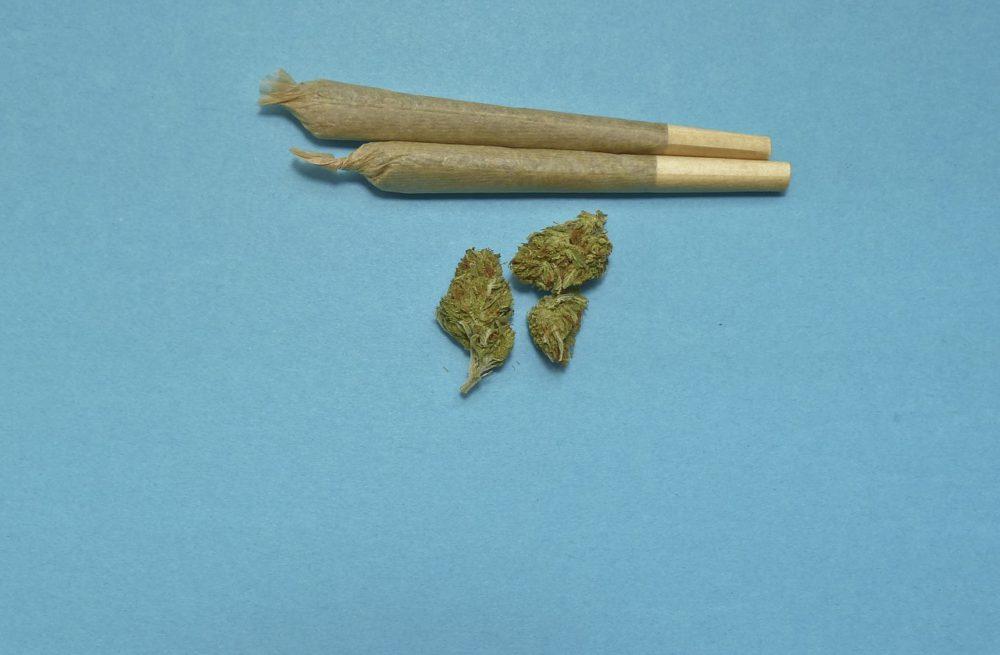 marihuana w siemianowicach