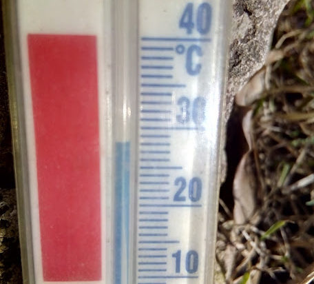 Ponieważ w słońcu słupek na termometrze dochodził minionej niedzieli do 30 stopnia trudno było wysiedzieć w domu.
