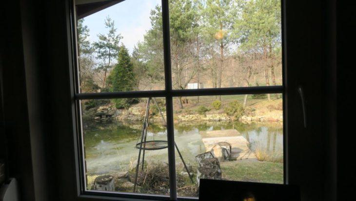 Widok z okna pracowni.