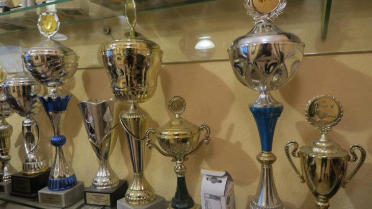 Pucharów za udział w gołębich zawodach jest ponad 200.