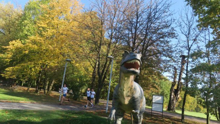 Trasa prowadziła również przez Dolinkę Dinozaurów.