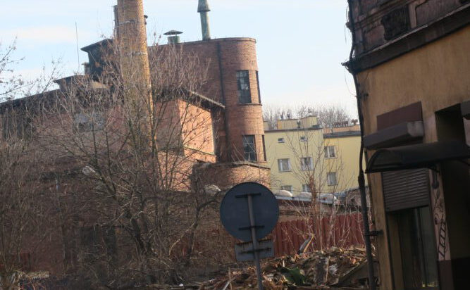 Brak zimy w Siemianowicach