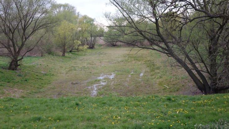 2. Wody gruntowe zdają się wychodzić na powierzchnie…