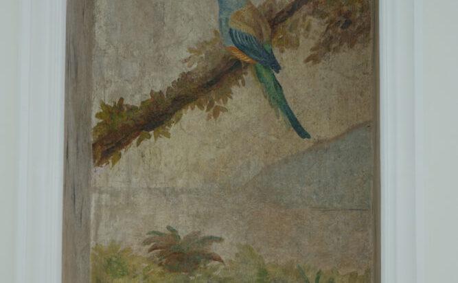 5. Odkryta podczas remontu polichromia zdobiąca wnękę w ścianie oranżerii