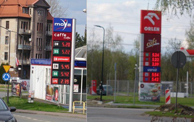 ceny paliw orlen i moya