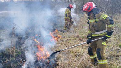 Płoną trawy na Śląsku – już blisko 1500 pożarów!