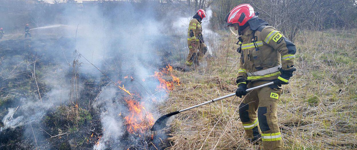 strażak gasi płonące trawy w siemianowicach śląskich