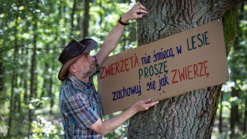 nie śmieć w lesie