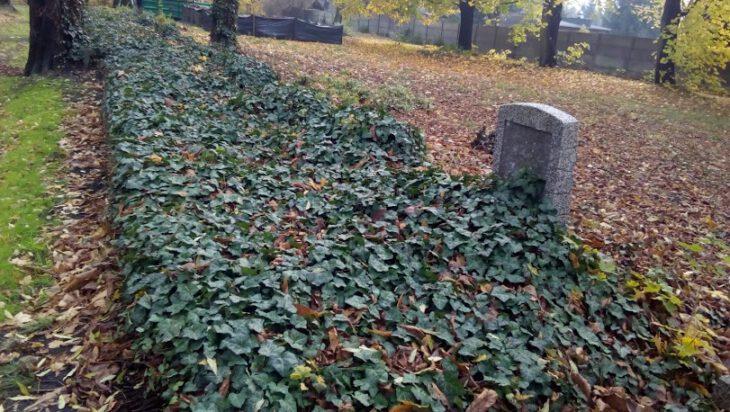 Tłok na cmentarzach