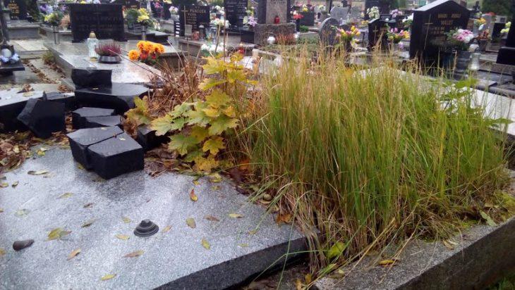 Zaniedbane są również nowsze groby.