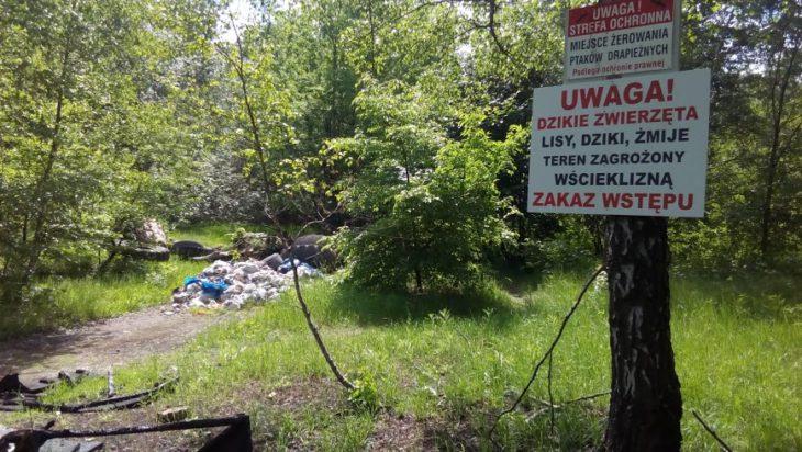 hasiok, wysypisko śmieci Na granicy Wełnowca i Hugo