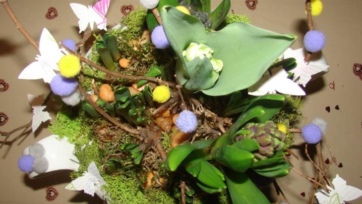 kwiaty siemianowice