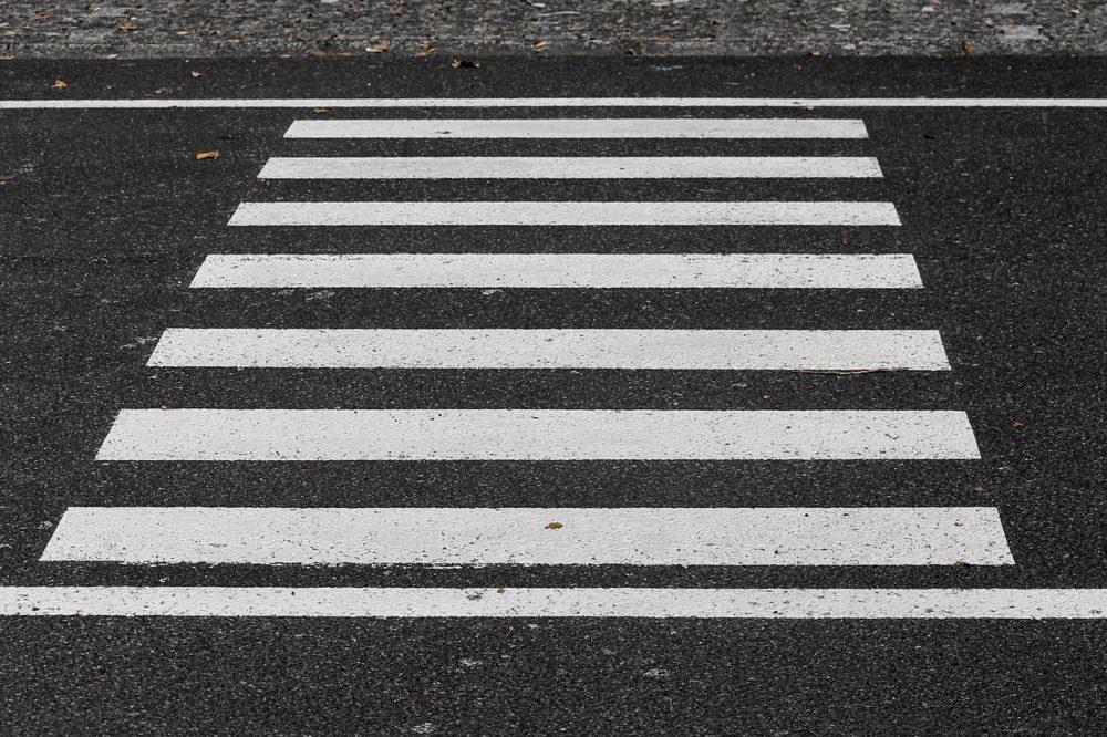 pieszy zebra